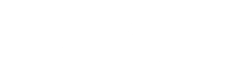 The Dry Age Boutique Logo cropped white